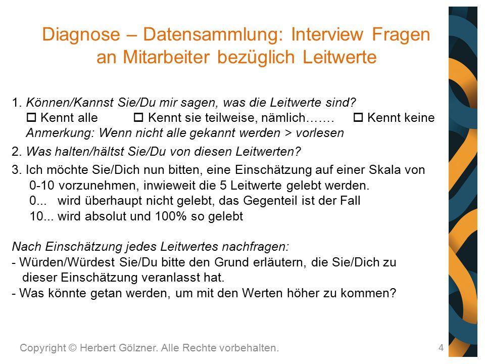 Diagnose – Datensammlung: Interview Fragen an Mitarbeiter bezüglich Leitwerte