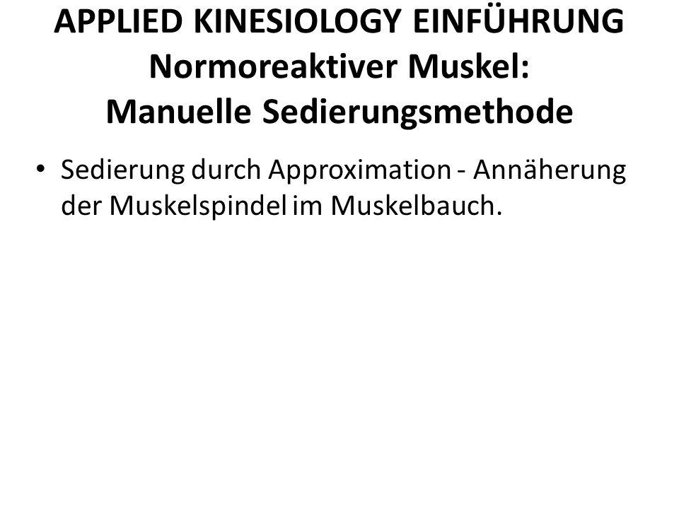 APPLIED KINESIOLOGY EINFÜHRUNG Normoreaktiver Muskel: Manuelle Sedierungsmethode