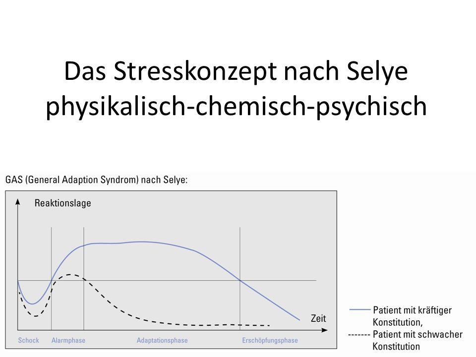 Das Stresskonzept nach Selye physikalisch-chemisch-psychisch