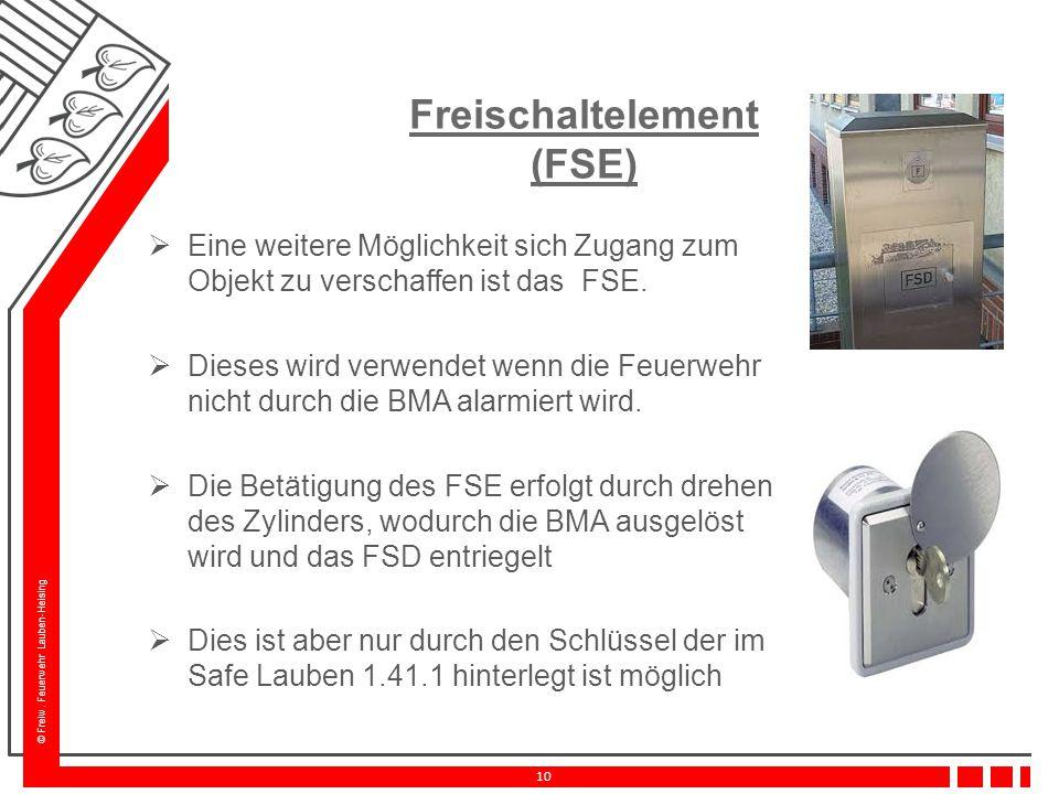 Freischaltelement (FSE)
