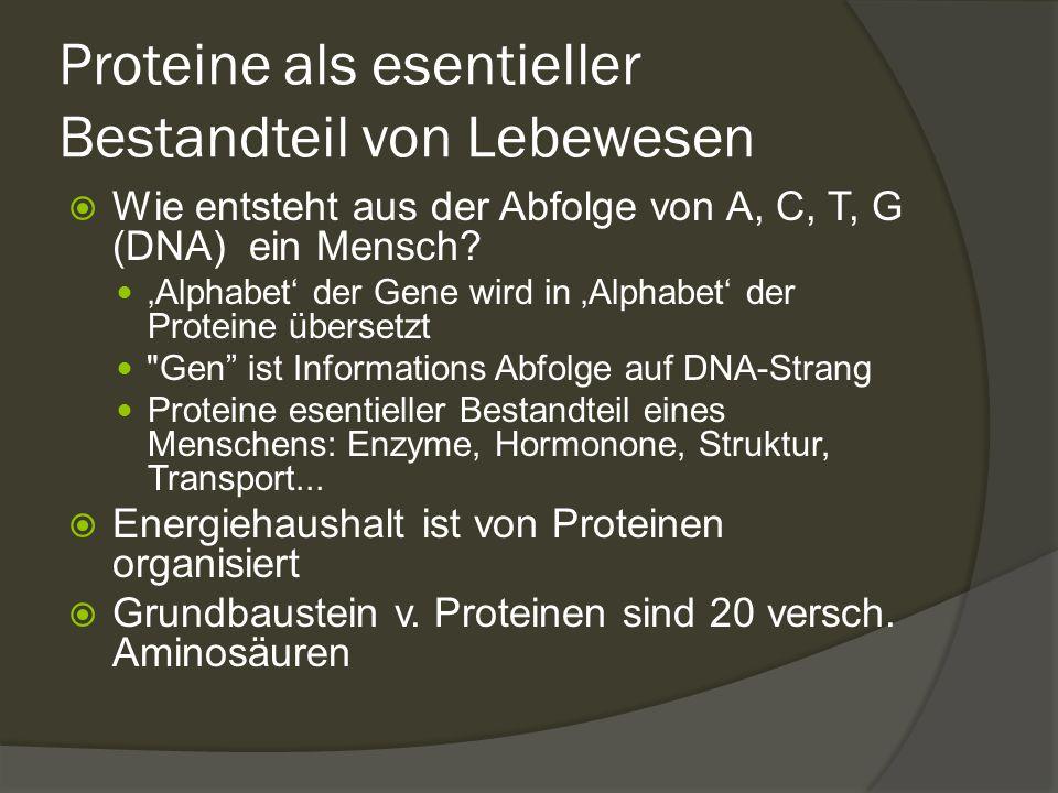 Proteine als esentieller Bestandteil von Lebewesen