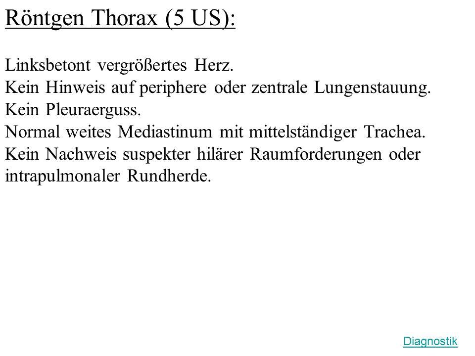 Röntgen Thorax (5 US): Linksbetont vergrößertes Herz.