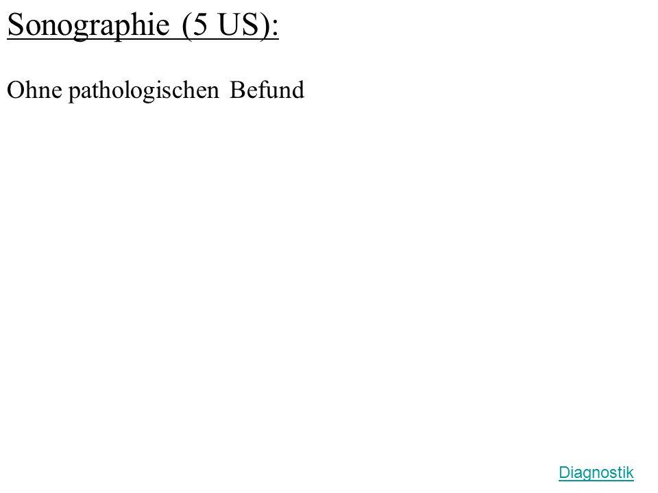 Sonographie (5 US): Ohne pathologischen Befund Diagnostik