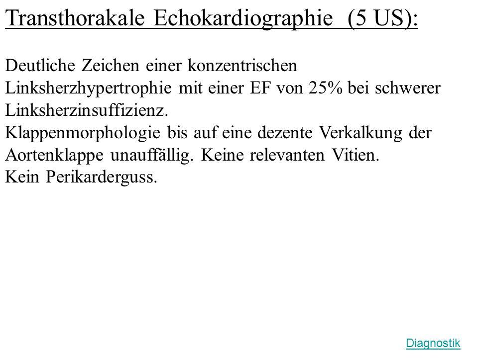 Transthorakale Echokardiographie (5 US):