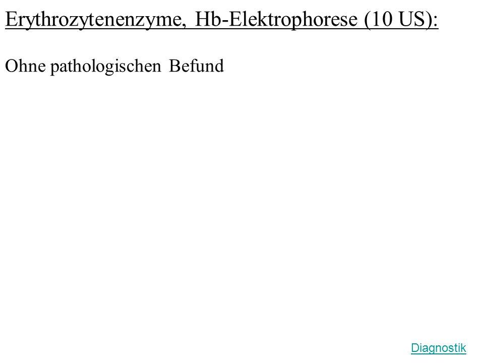 Erythrozytenenzyme, Hb-Elektrophorese (10 US):