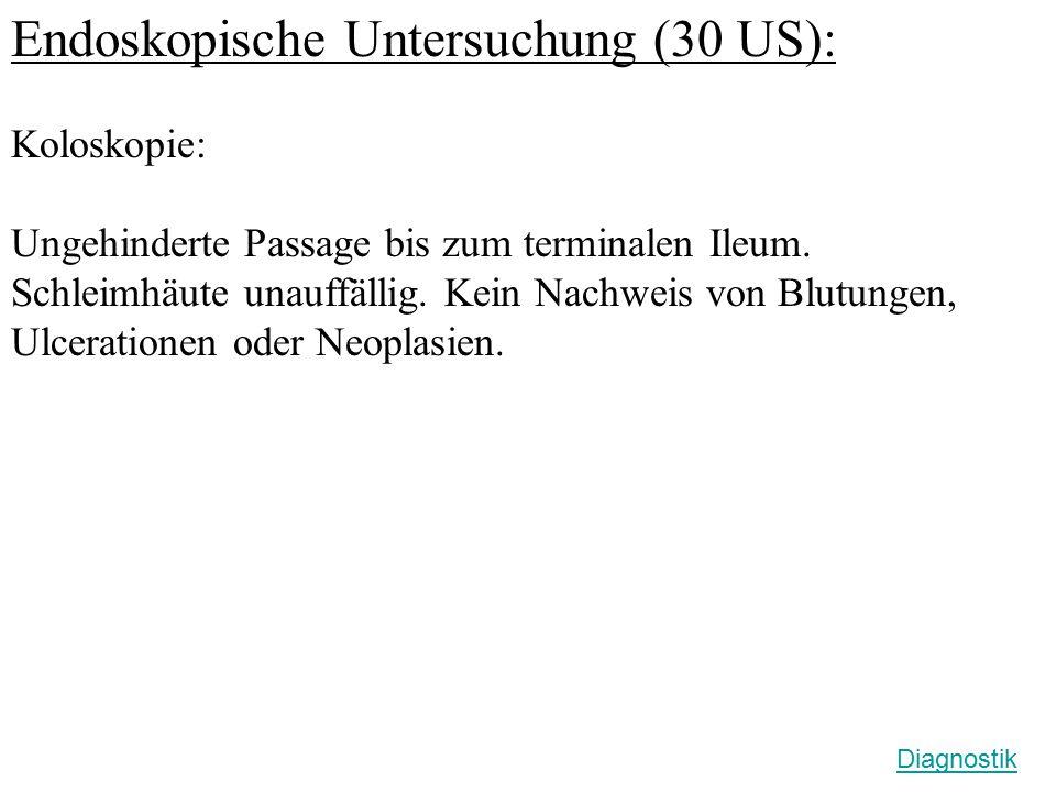 Endoskopische Untersuchung (30 US):