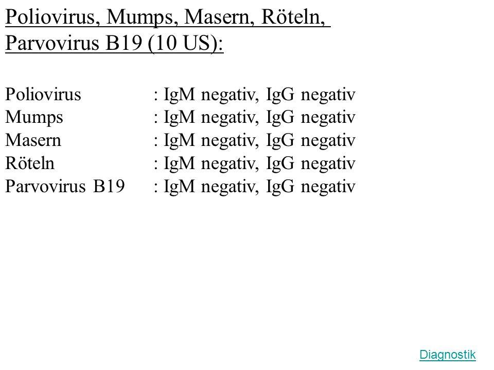 Poliovirus, Mumps, Masern, Röteln, Parvovirus B19 (10 US):
