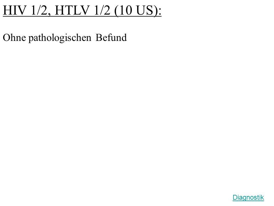 HIV 1/2, HTLV 1/2 (10 US): Ohne pathologischen Befund Diagnostik