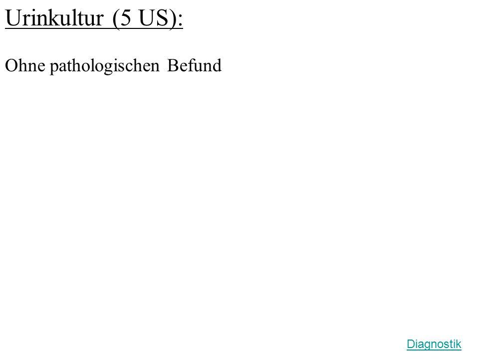 Urinkultur (5 US): Ohne pathologischen Befund Diagnostik