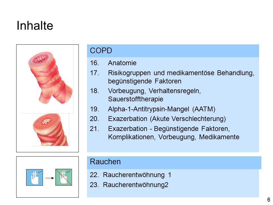 Inhalte COPD Rauchen Anatomie