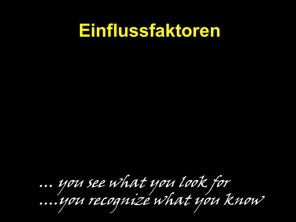 Einflussfaktoren … you see what you look for