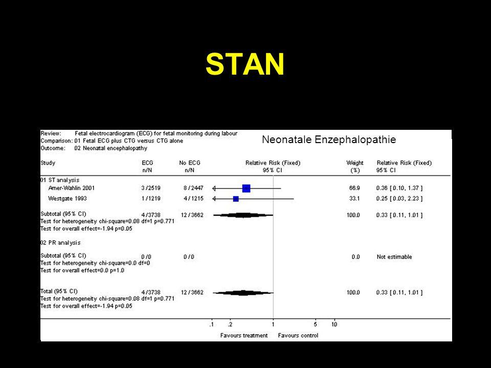 STAN Neonatale Enzephalopathie