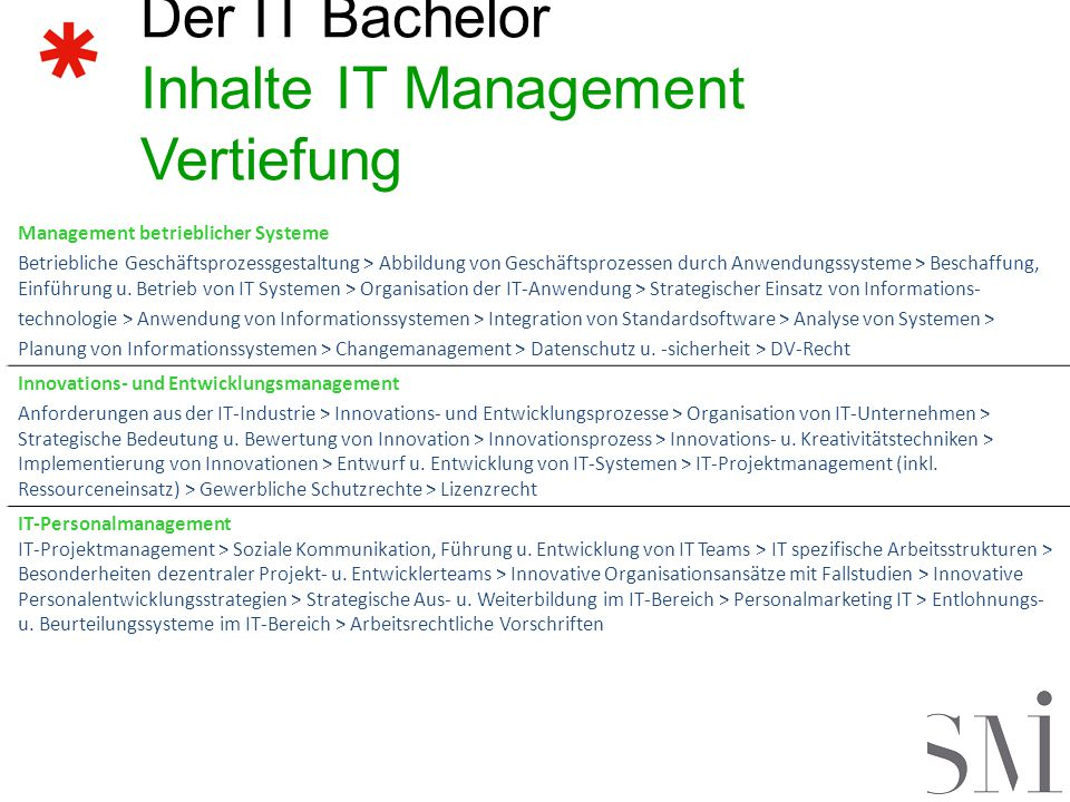 Der IT Bachelor Inhalte IT Management Vertiefung