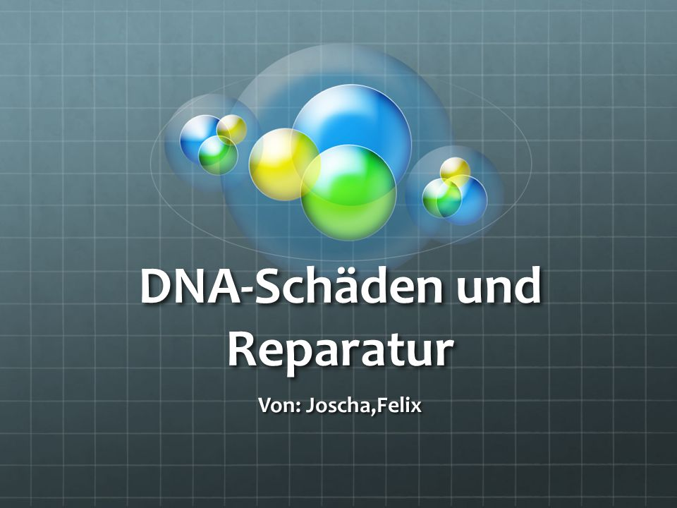 DNA-Schäden und Reparatur
