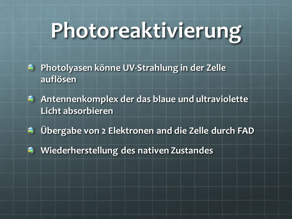 Photoreaktivierung Photolyasen könne UV-Strahlung in der Zelle auflösen. Antennenkomplex der das blaue und ultraviolette Licht absorbieren.