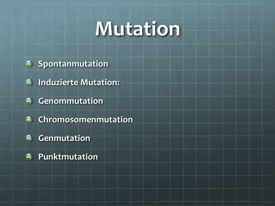 Mutation Spontanmutation Induzierte Mutation: Genommutation