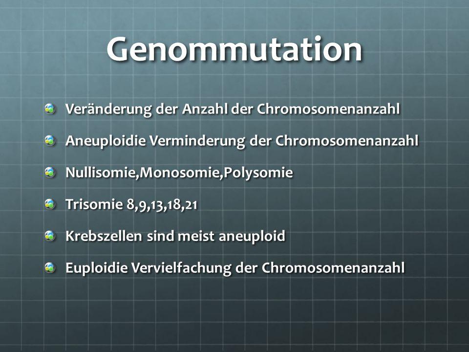 Genommutation Veränderung der Anzahl der Chromosomenanzahl