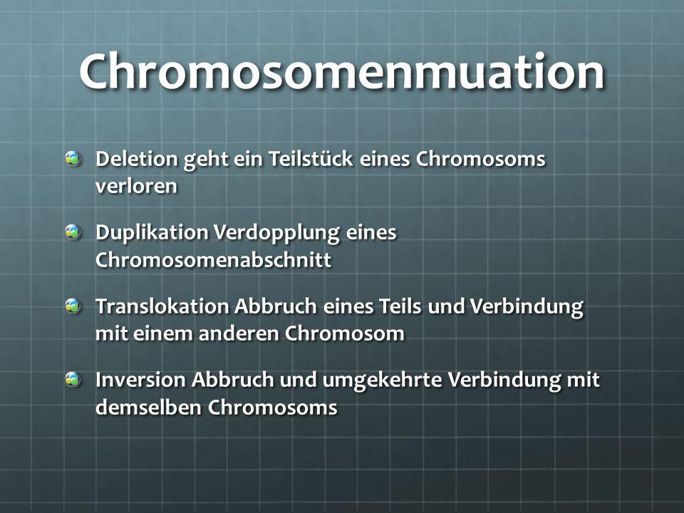 Chromosomenmuation Deletion geht ein Teilstück eines Chromosoms verloren. Duplikation Verdopplung eines Chromosomenabschnitt.