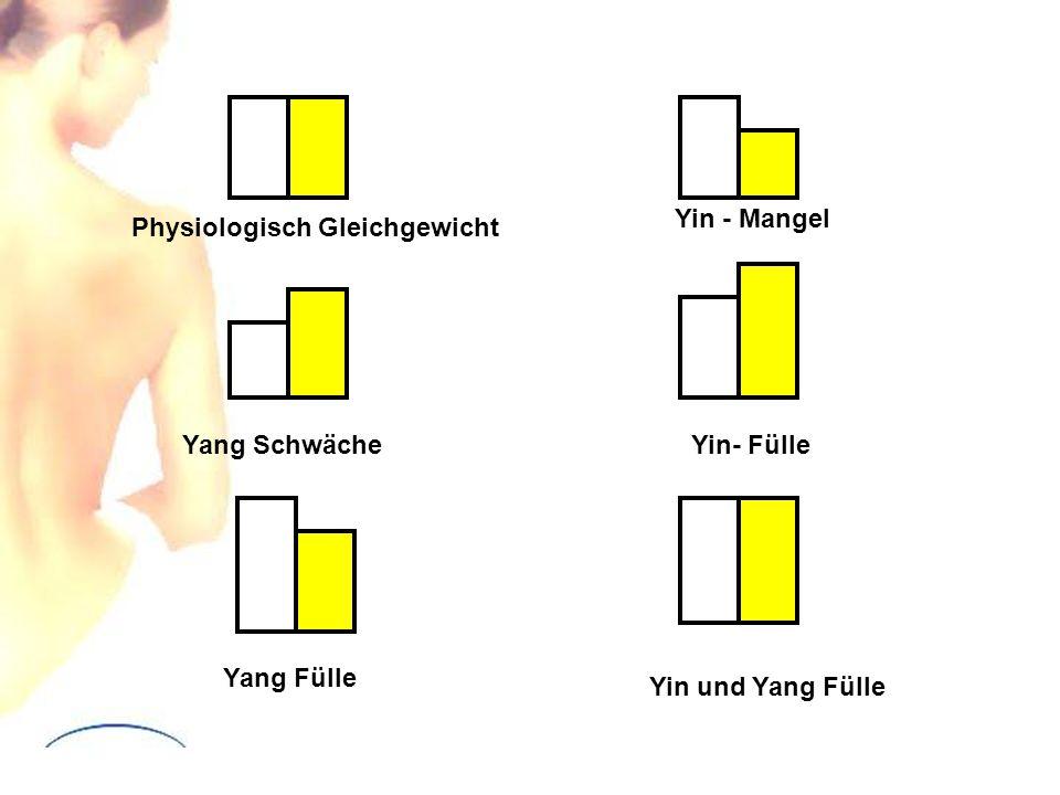 Yin - Mangel Physiologisch Gleichgewicht Yang Schwäche Yin- Fülle Yang Fülle Yin und Yang Fülle