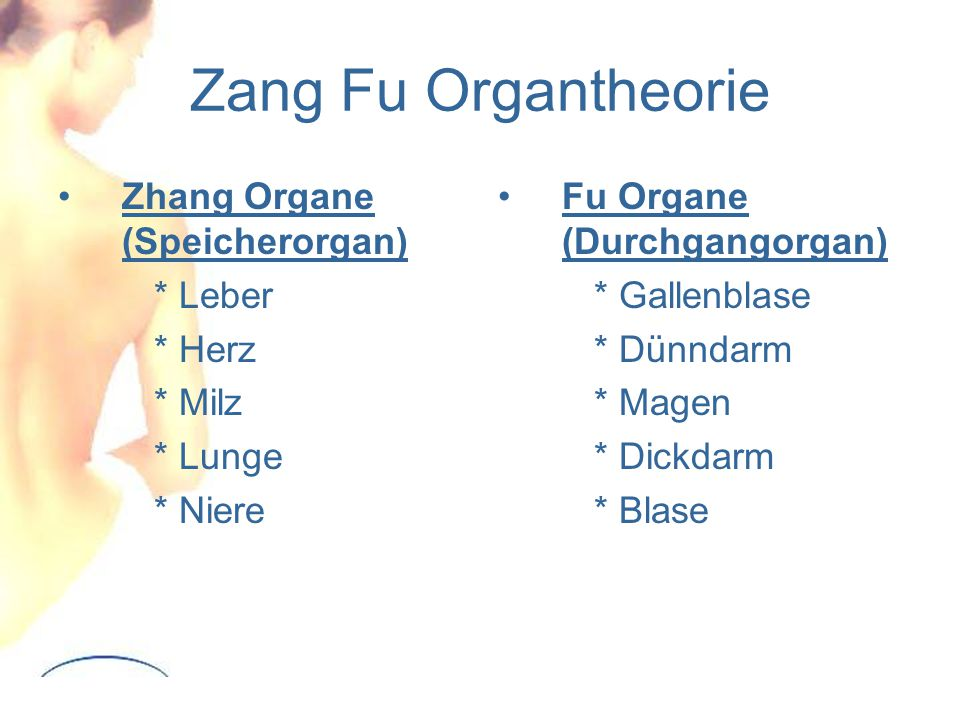 Zang Fu Organtheorie Zhang Organe (Speicherorgan) * Leber * Herz