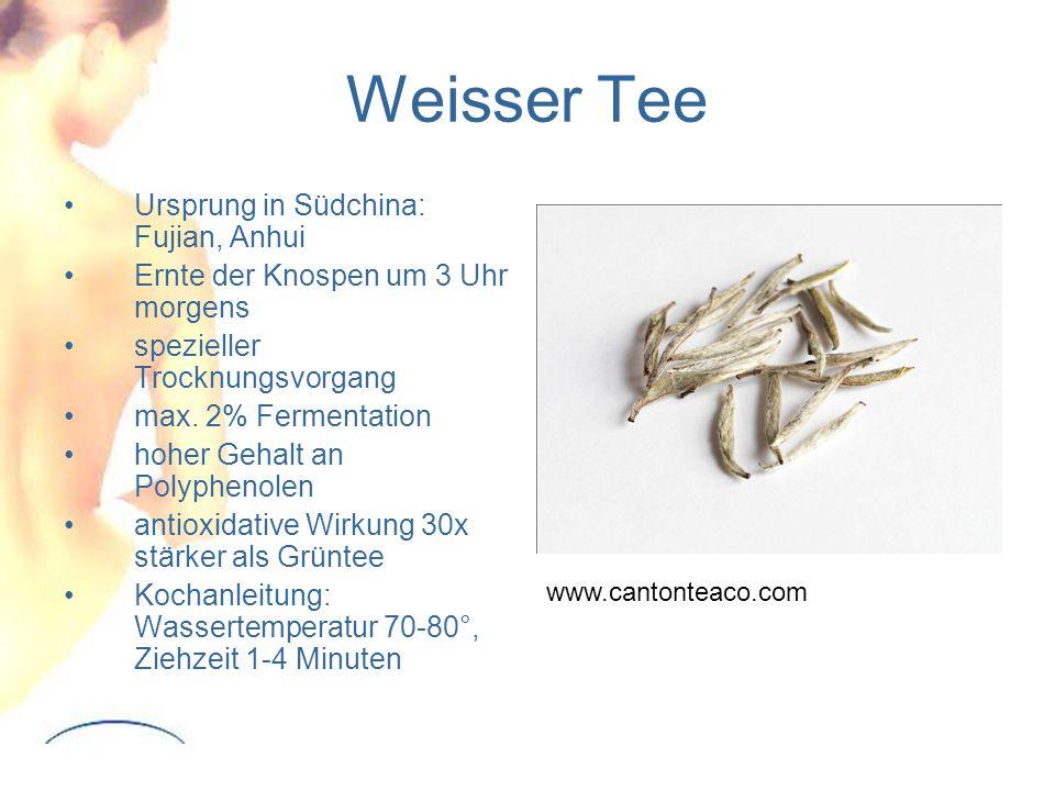 Weisser Tee Ursprung in Südchina: Fujian, Anhui
