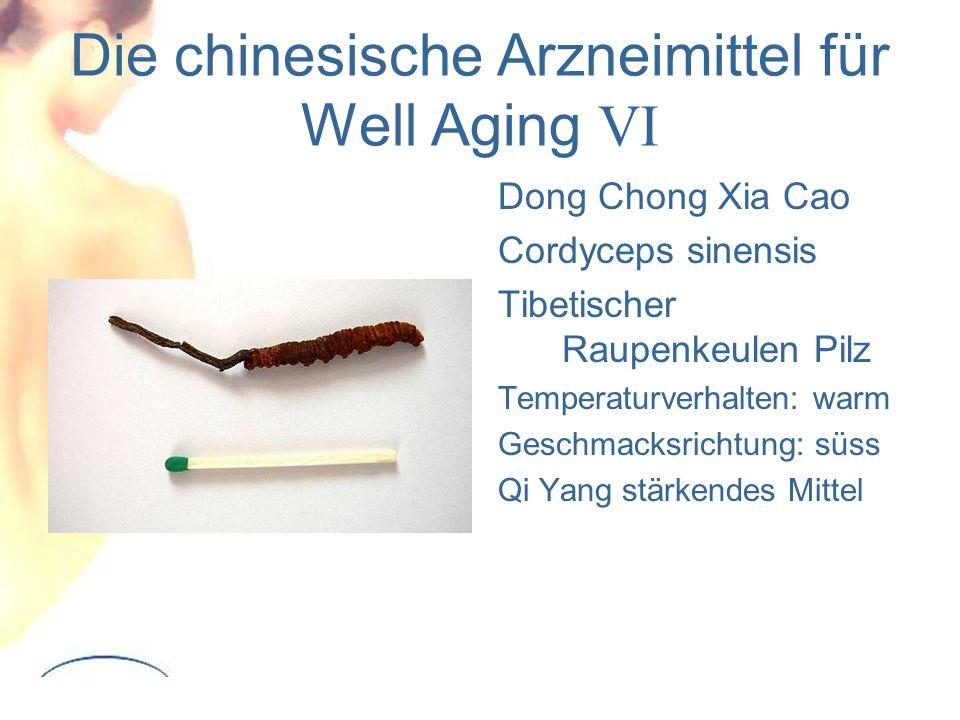 Die chinesische Arzneimittel für Well Aging VI
