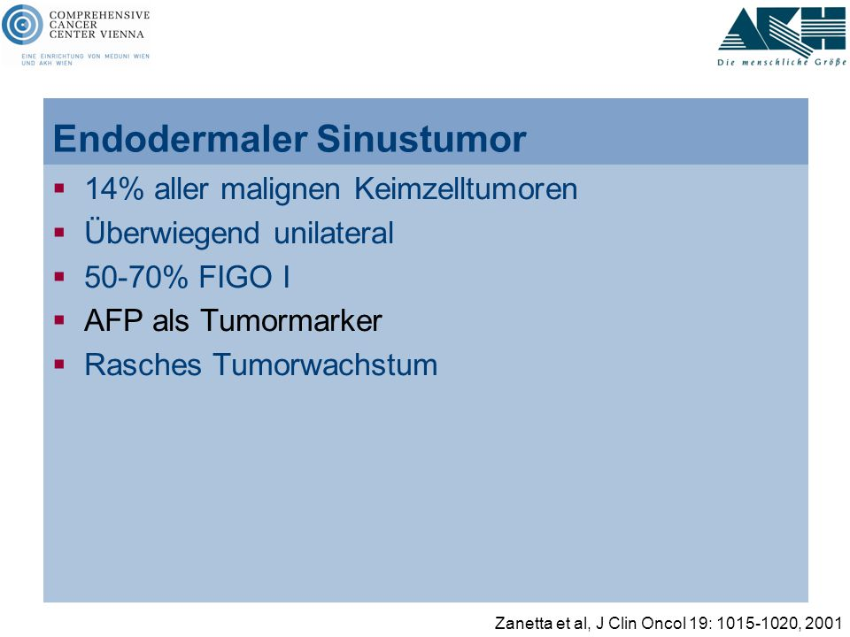 Endodermaler Sinustumor