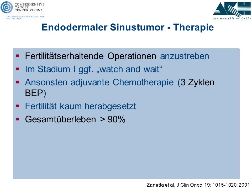 Endodermaler Sinustumor - Therapie