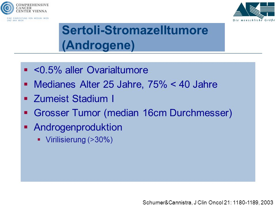 Sertoli-Stromazelltumore (Androgene)