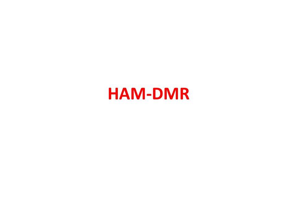 HAM-DMR