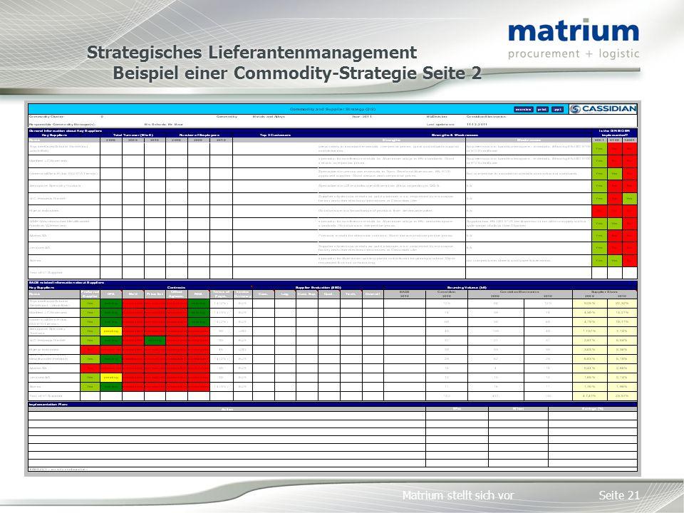 Strategisches Lieferantenmanagement Beispiel einer Commodity-Strategie Seite 2