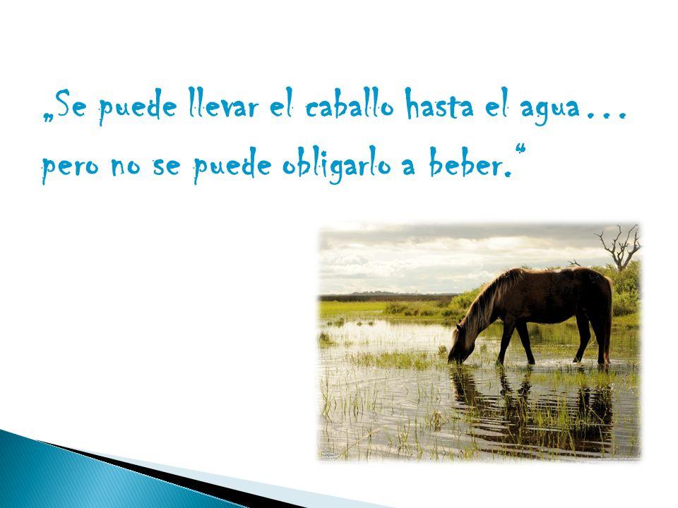 """""""Se puede llevar el caballo hasta el agua… pero no se puede obligarlo a beber."""