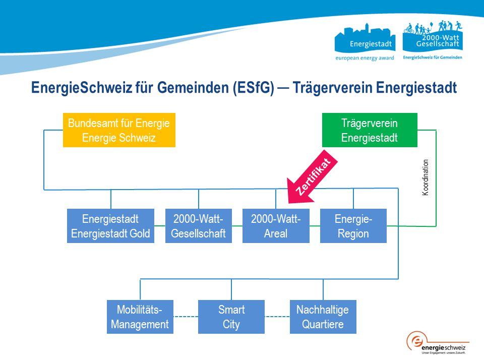 EnergieSchweiz für Gemeinden (ESfG) ─ Trägerverein Energiestadt
