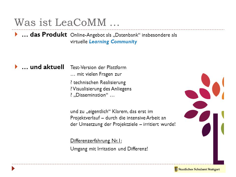 """Was ist LeaCoMM … … das Produkt Online-Angebot als """"Datenbank insbesondere als virtuelle Learning Community."""