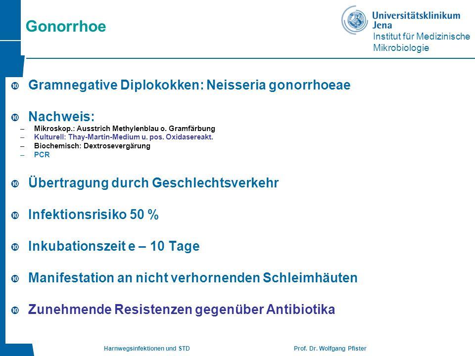 Gonorrhoe Gramnegative Diplokokken: Neisseria gonorrhoeae Nachweis: