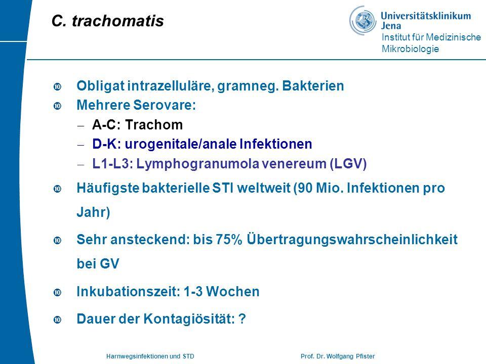 C. trachomatis Obligat intrazelluläre, gramneg. Bakterien