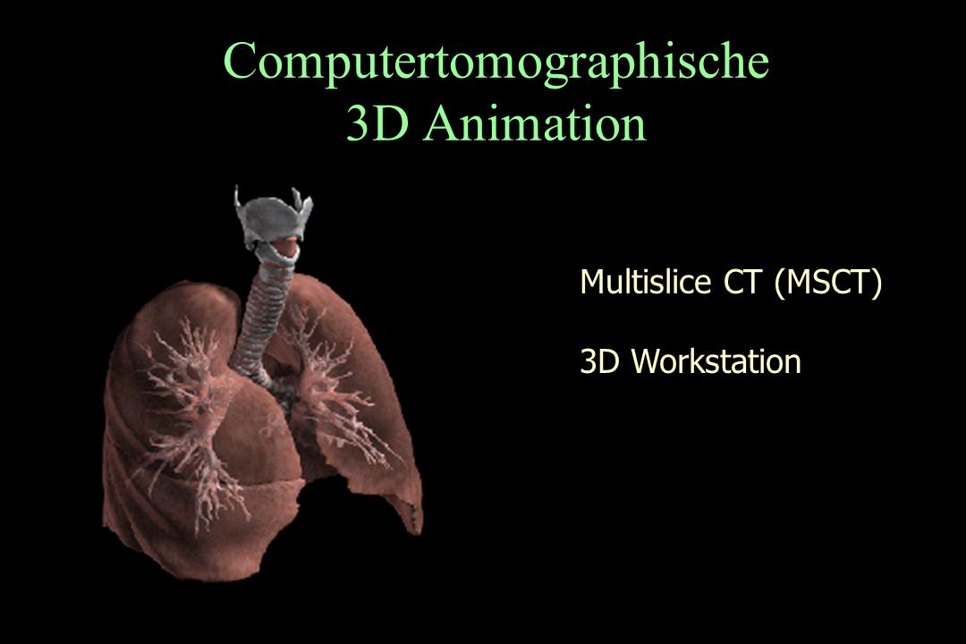 Computertomographische 3D Animation
