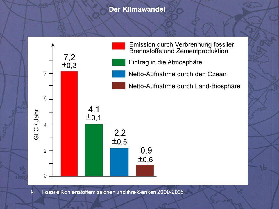 Fossile Kohlenstoffemissionen und ihre Senken 2000-2005