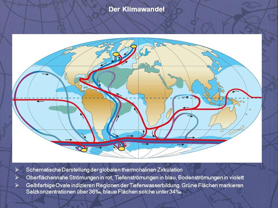 Schematische Darstellung der globalen thermohalinen Zirkulation