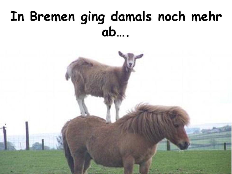 In Bremen ging damals noch mehr ab….