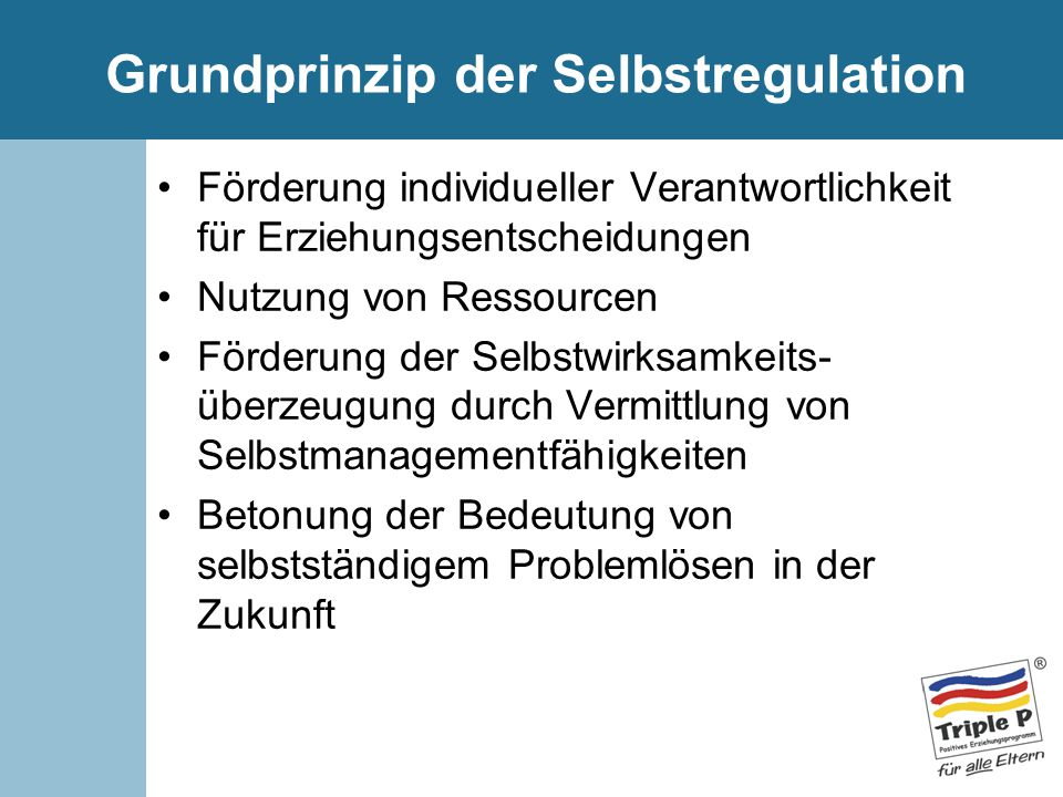 Grundprinzip der Selbstregulation