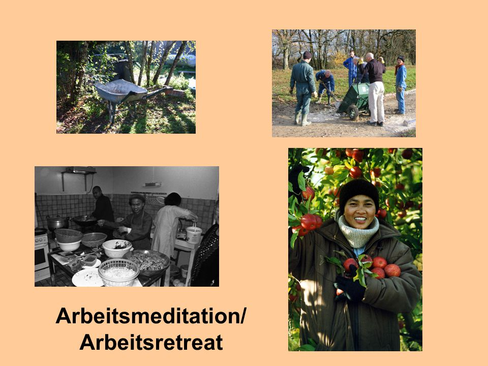 Arbeitsmeditation/ Arbeitsretreat