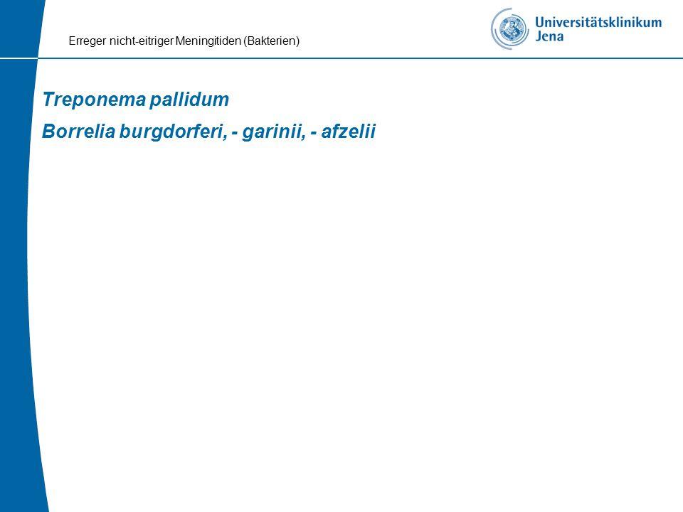 Erreger nicht-eitriger Meningitiden (Bakterien)