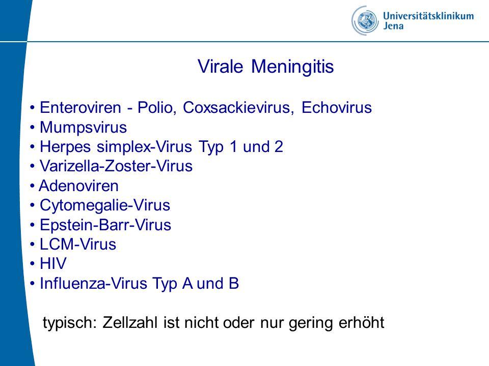 Virale Meningitis Enteroviren - Polio, Coxsackievirus, Echovirus