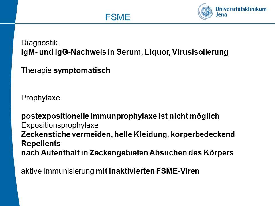 FSME Diagnostik. IgM- und IgG-Nachweis in Serum, Liquor, Virusisolierung. Therapie symptomatisch.