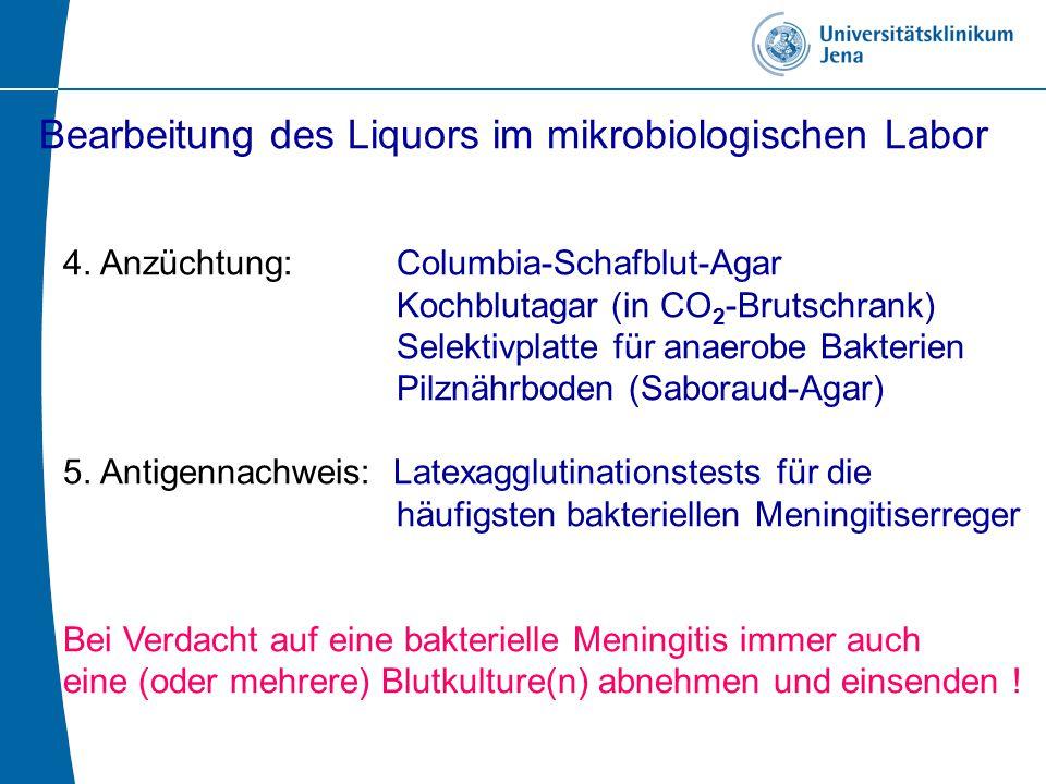Bearbeitung des Liquors im mikrobiologischen Labor