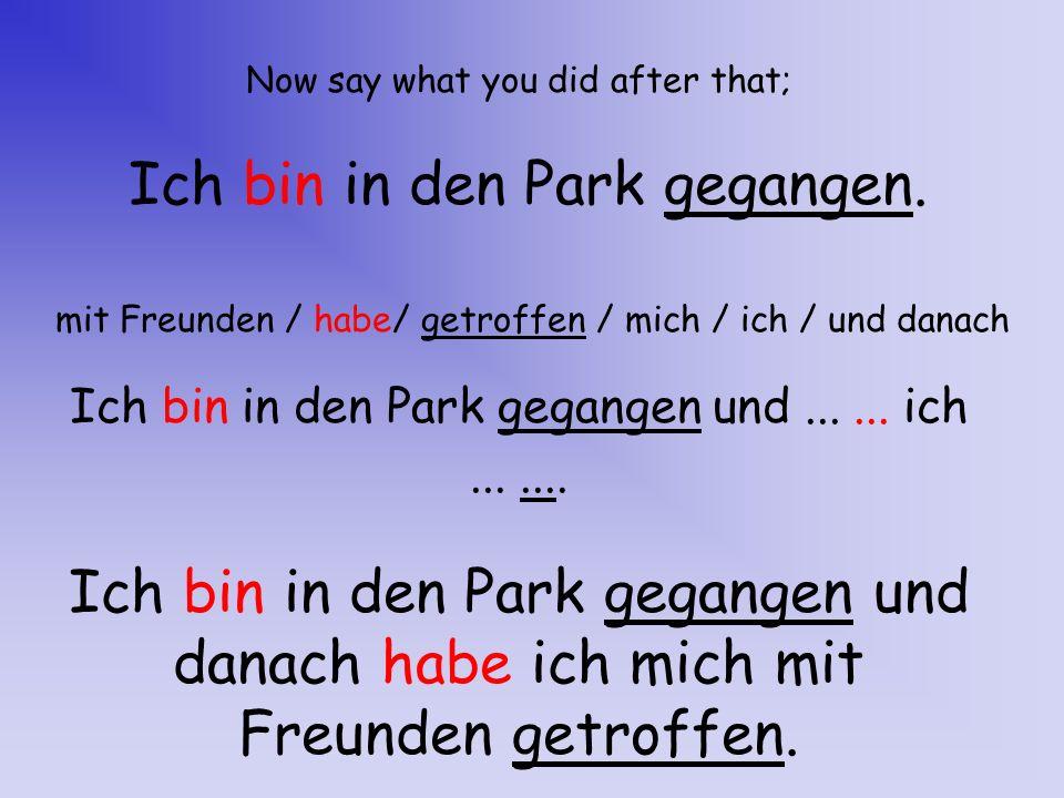 Ich bin in den Park gegangen.