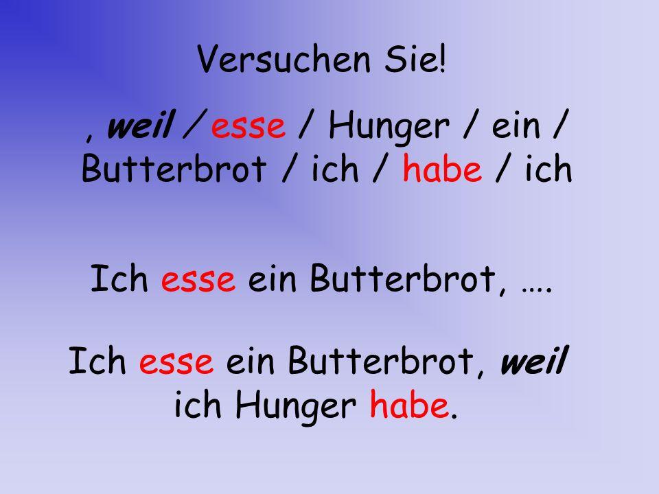 , weil / esse / Hunger / ein / Butterbrot / ich / habe / ich