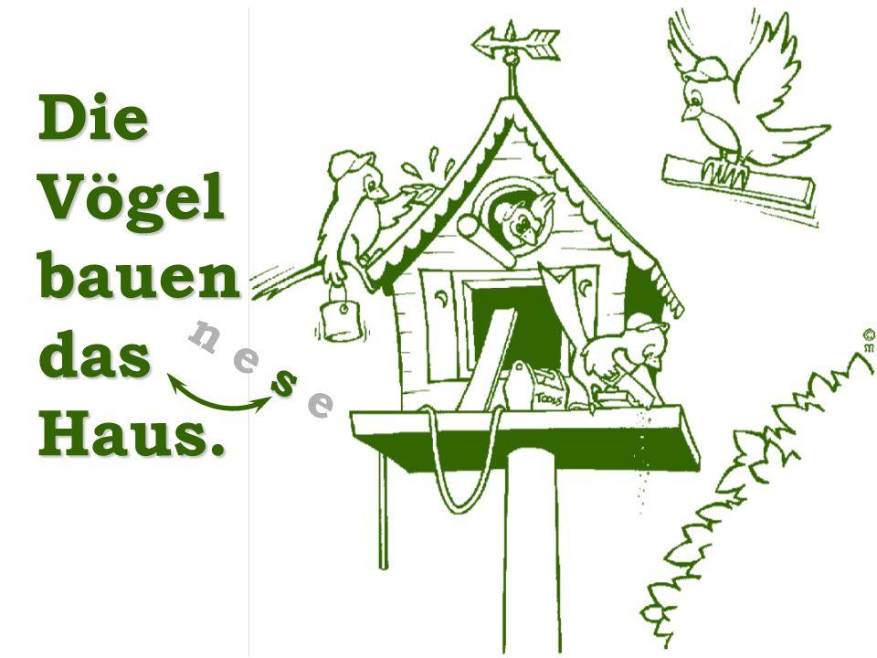 Die Vögel bauen das Haus.