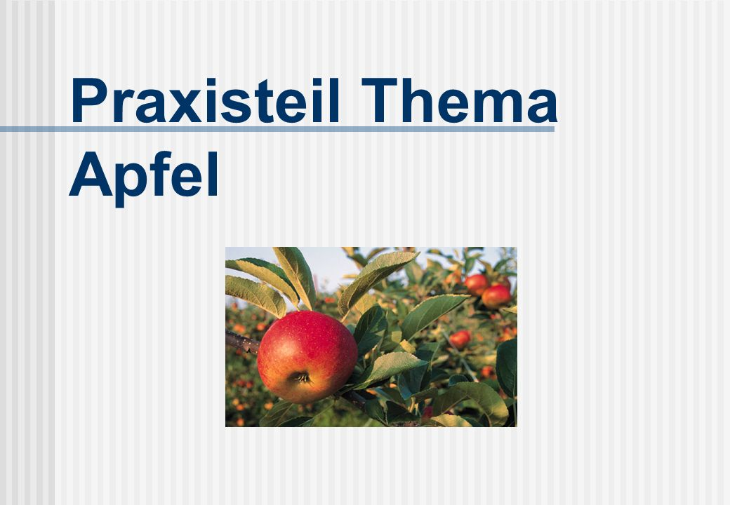 Praxisteil Thema Apfel